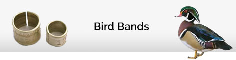 bird bands
