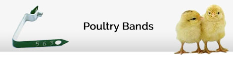 poultry bands