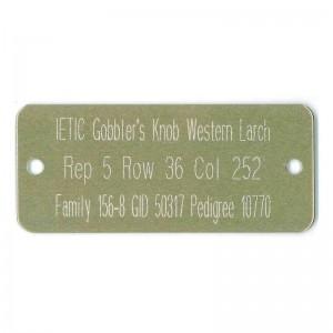 gold tag laser etched