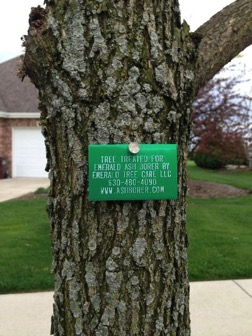 EAB tree tag