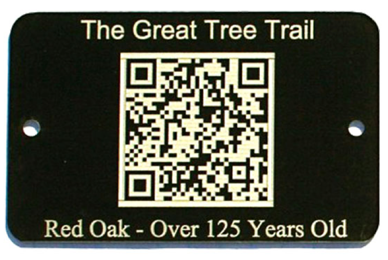 tree trail tag with qr code