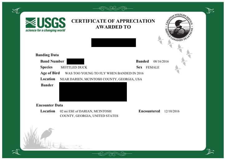 USGS bird band certificate