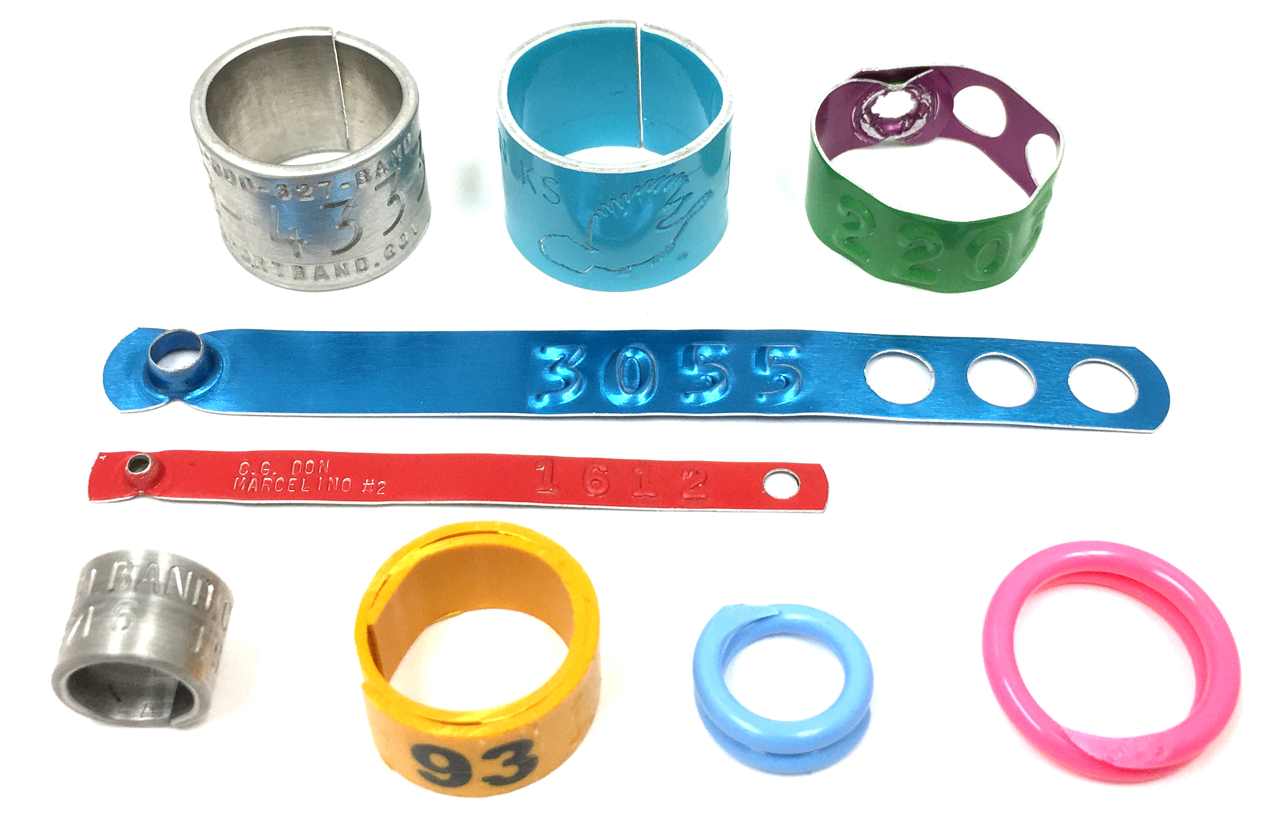 legbands for spanish site