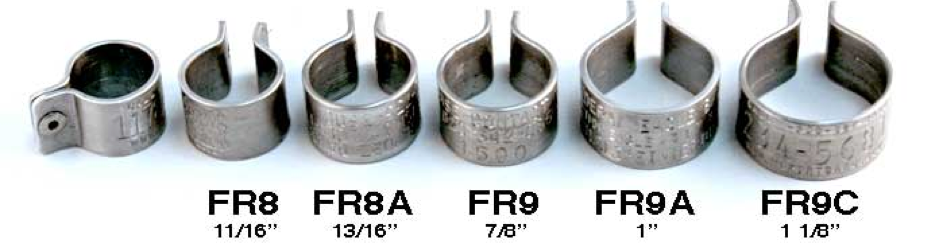 bird rivet bands
