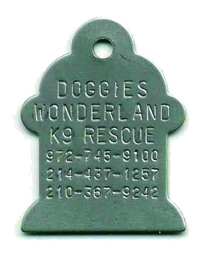 fire plu, fire hydrant pet ID tag in stainless steel