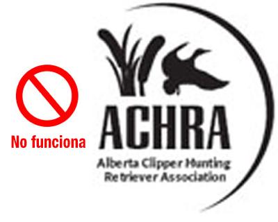 bad logo example spanish