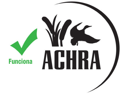 good logo example spanish
