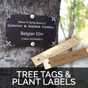 tree tags plant labels