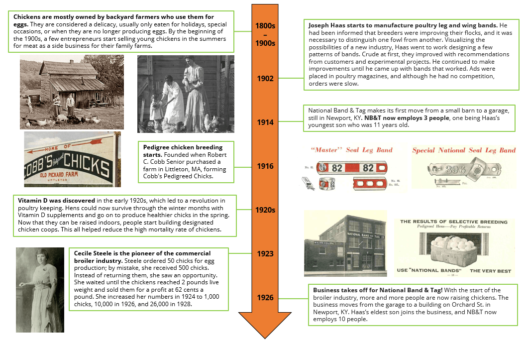 National Poultry Day - Chicken Timeline from 1900s