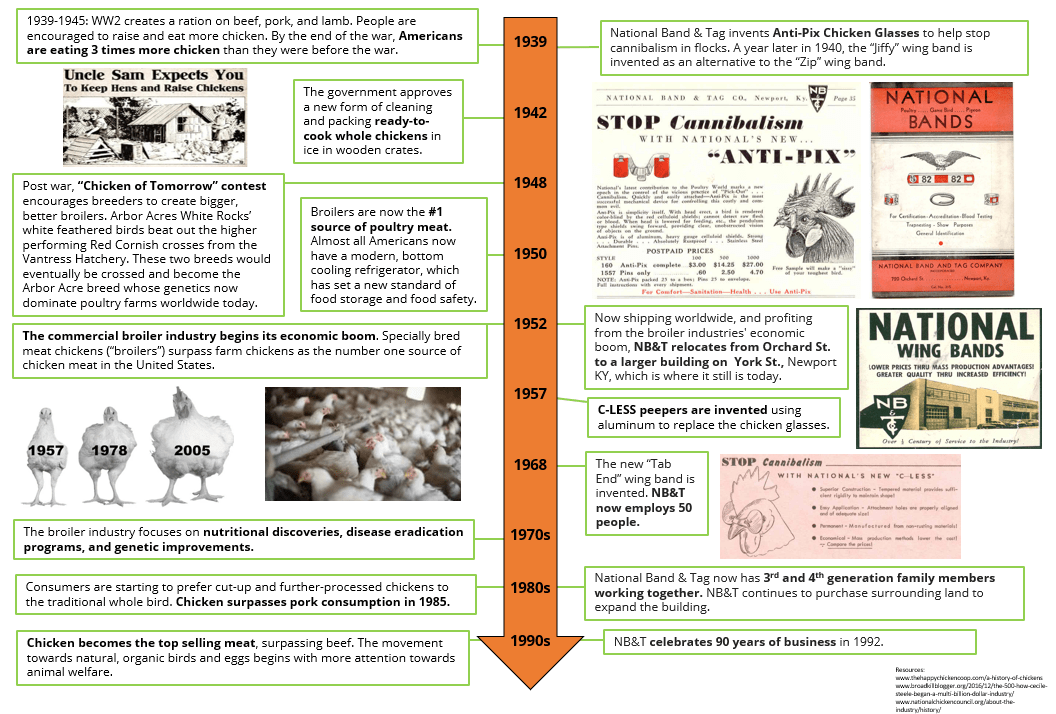 National Poultry Day - History of Chickens