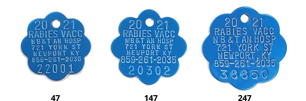 2021 rabies tags blue rosette